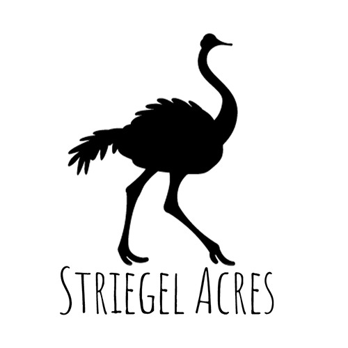 Striegel Acres